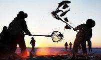 集团行政领导实地踏查查干湖国营渔场